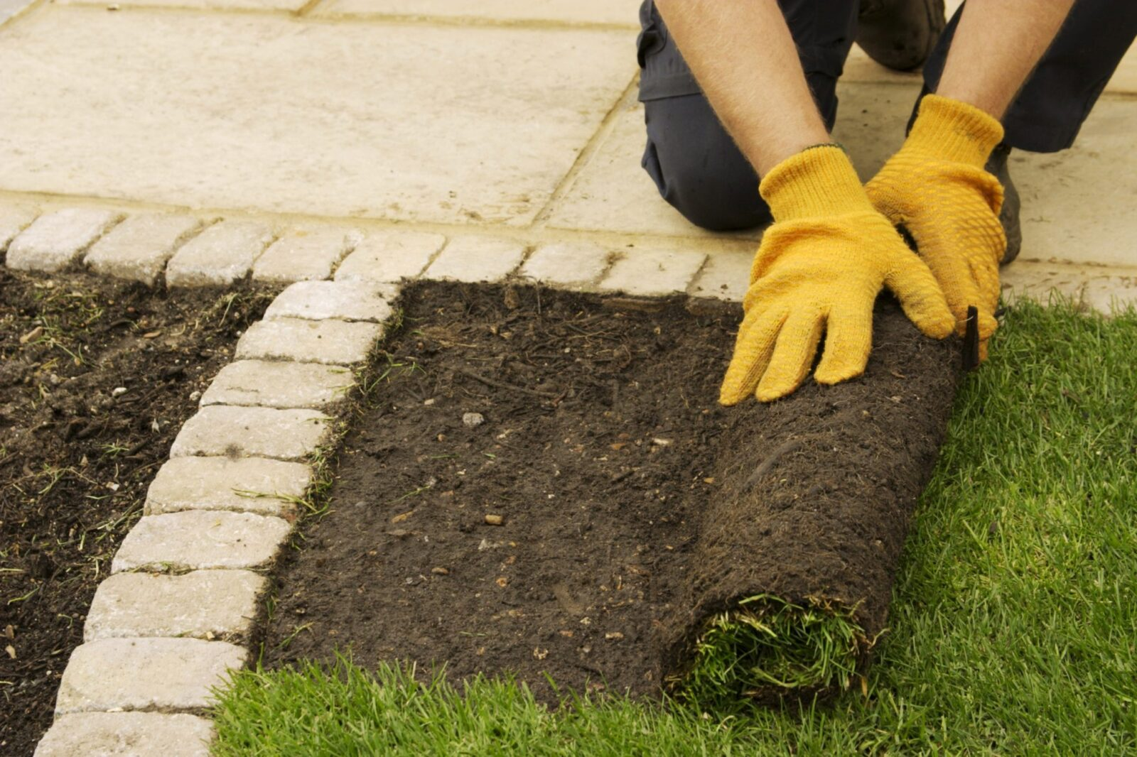 Image result for Commercial Landscaping istock